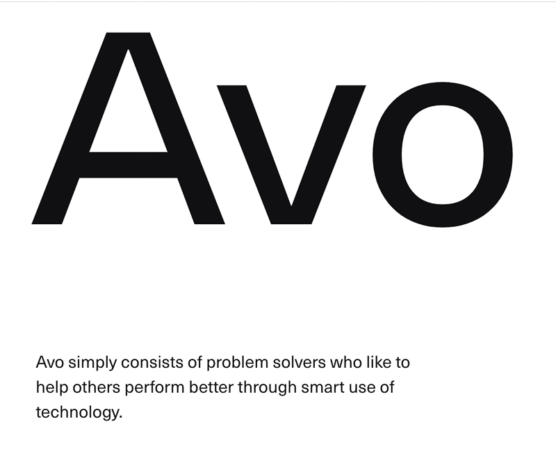Avo Consulting designed by Bleed