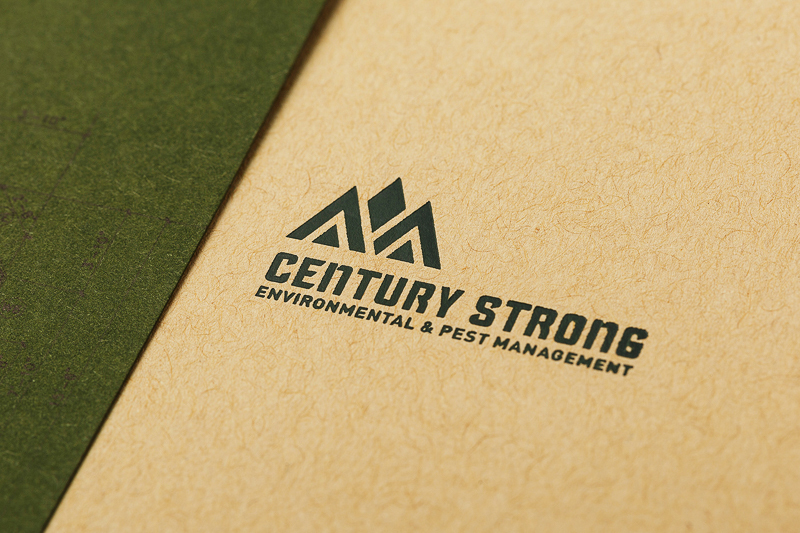 Century Strong designed by Fundamental