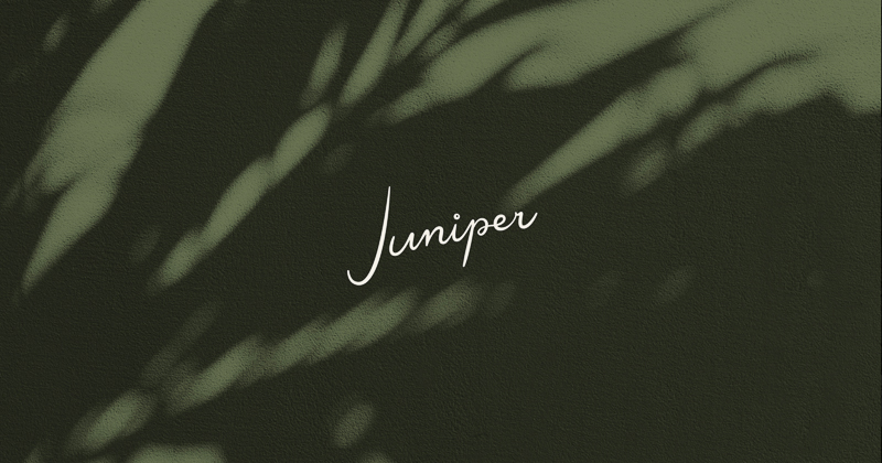 Juniper designed by Project M